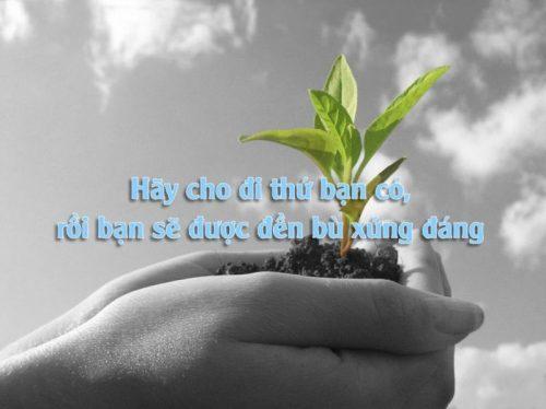 cho-di-va-nhan-lai-1024x767