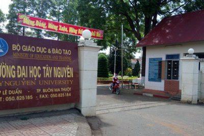 Thông tin tuyển sinh trường đại học Tây Nguyên